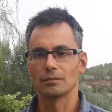 Avidan Efody - Verification Architect